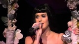 Katy Perry - Not Like The Movies (California Dreams Tour)