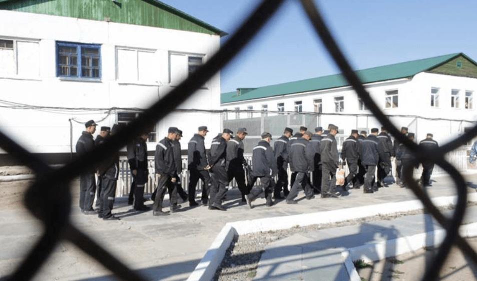 Житель Зеленчукского района проведет в колонии строгого режима два года