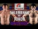 Супербой! Александр Шлеменко против Анатолия Токова   Прогноз БЕЛЛАТОР 208   UFC review