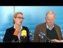 AFD JUBELT_ Kauder-Desaster ist Anfang von Ende der Merkel-Regierung [720p]