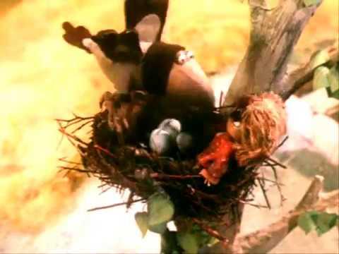 Да кто ты был Последний домовой А теперь первый гнездовой