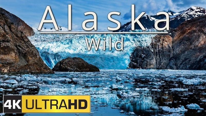 Alaska: Wild (4K Aerial Timelapse Edit)
