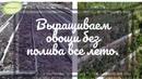 Выращиваем овощи без полива всё лето Часть 1 Кольцова Ирина