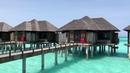 Красота на Мальдивах! 🌴