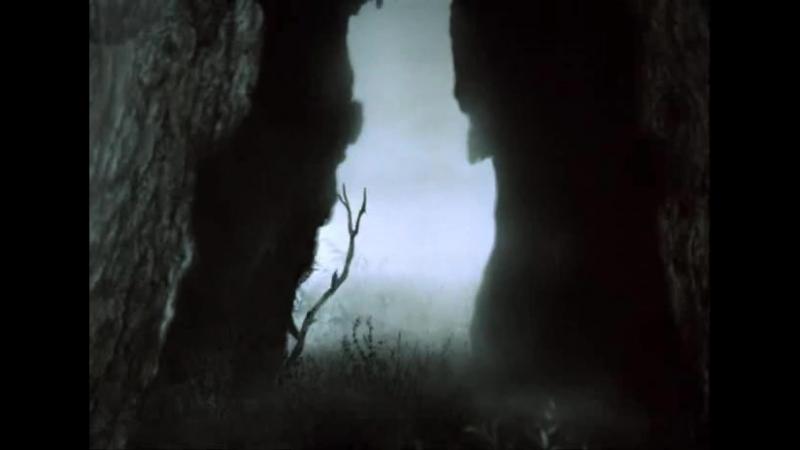 Ёжик в тумане - 1975 год (мультипликационный фильм Юрия Норштейна)