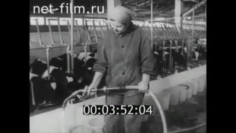 КОМПЛЕКС ПАШСКИЙ. 1982 ГОД