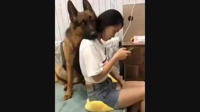 Video.kz.kazBrIjWcxHLdv.mp4