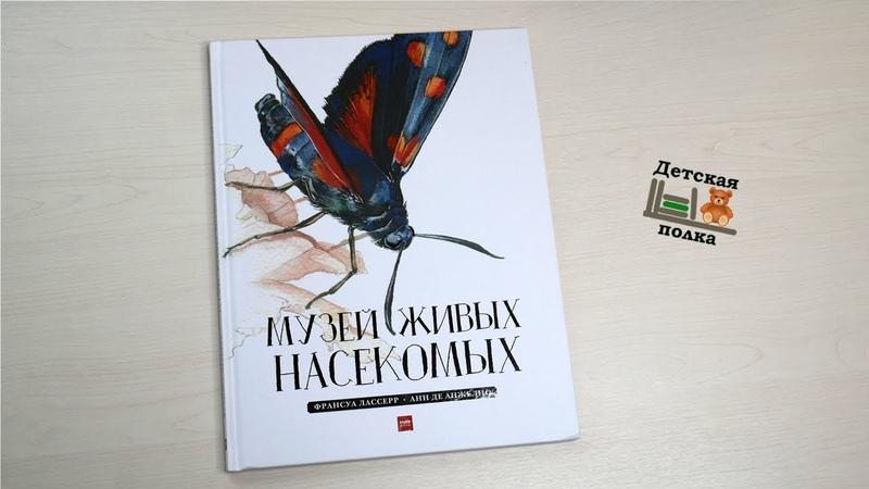 Музей живых насекомых Ф.Лассерр 4   Детская книжная полка
