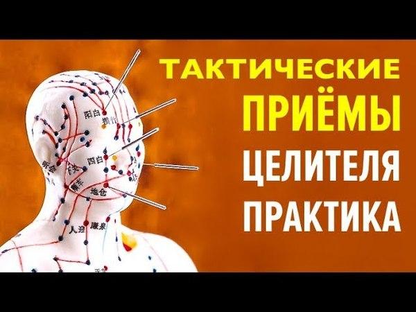 Дзен терапия Тактические приёмы профессионального целителя практика