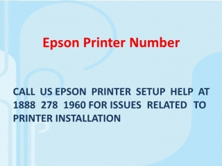 Epson Printer Number Provides Instant Help for Printer Issues