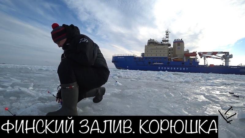 Рыбалка на Финском Заливе Шпунты Корюшка
