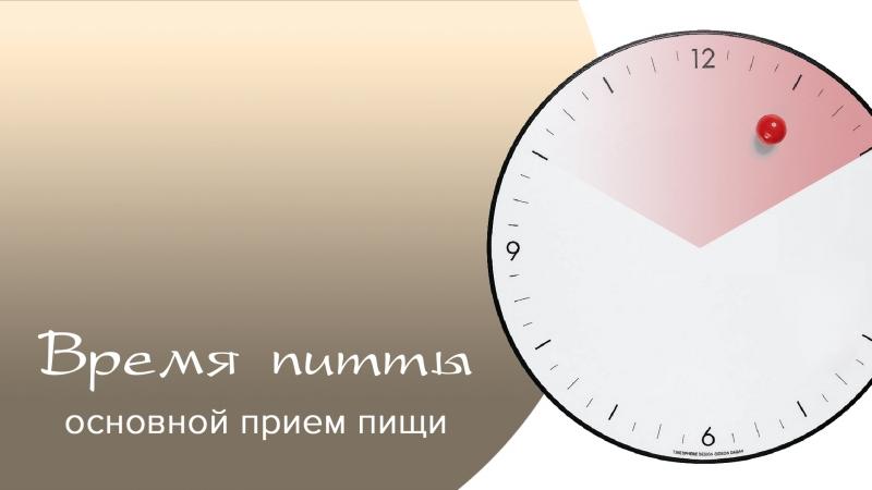 Константин Хасин - Режим дня. Время питты
