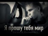 Евгений Жихаревич -