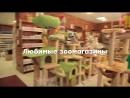 Золотая рыбка Зоомагазины в Санкт Петербурге Товары для собак и кошек