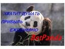 Как заработать в интернете 50 000 рублей на полном автомате 1 Мой скайп 79225325808 Nina