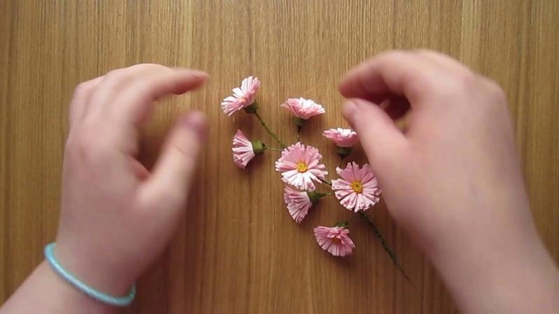ветка с цветами/ branch with pink flowers
