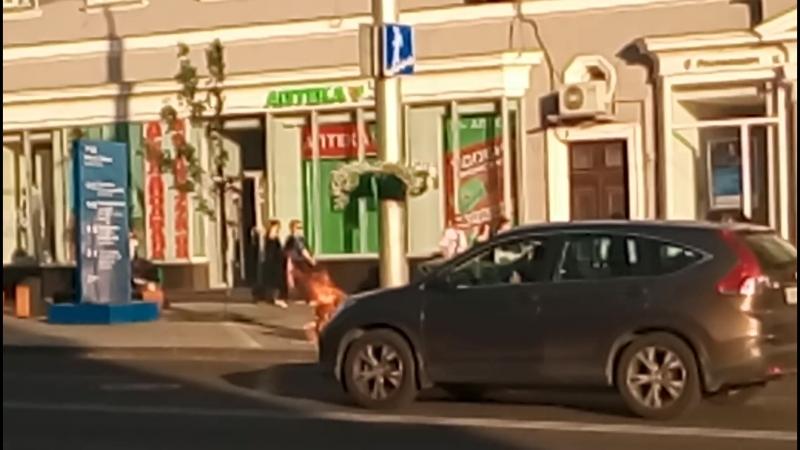 Мусорный бак полыхает возле ЦУМа в Ростове