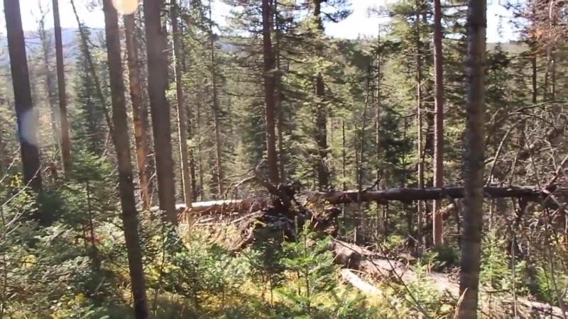 [abvgat] Осенний одиночный поход по избам, тайга, балаганы. Таежные реки, Карадат 30км. пути