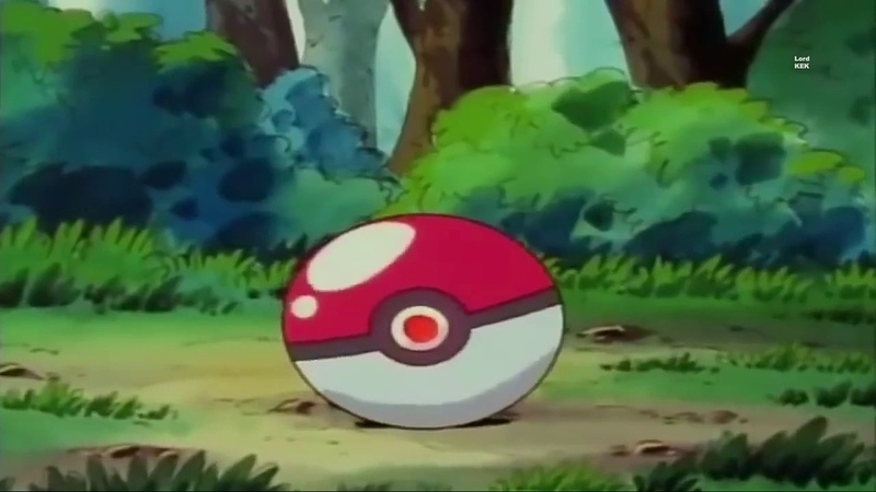 Risitas catches Pokémon