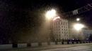 Летучие мыши атакавали белорусский город Витебск