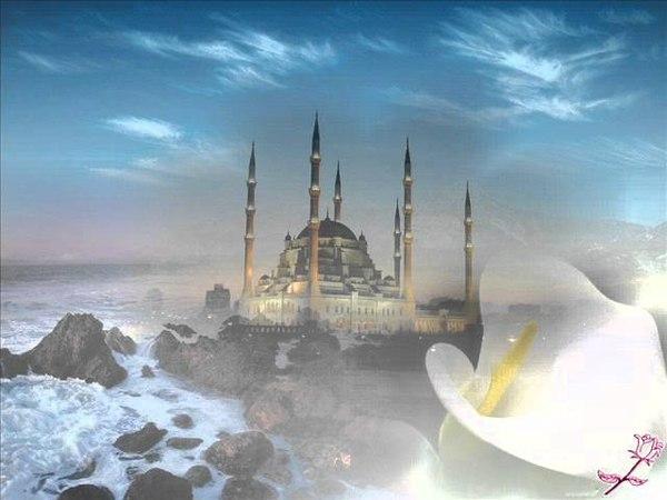 Hədis - Sonuncu ümmətin fəziləti