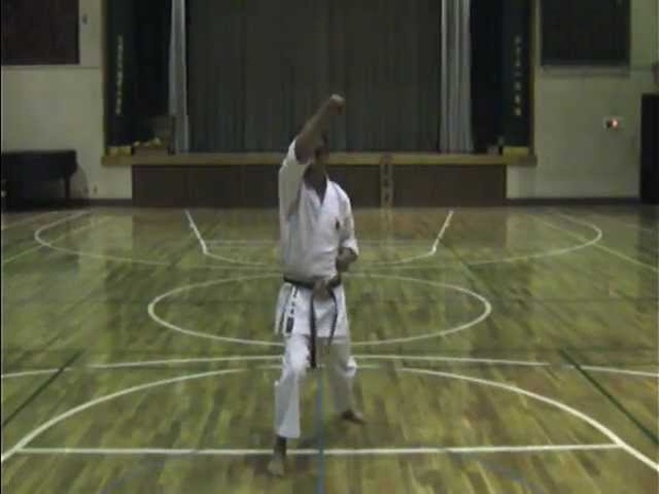 神道自然流 空手術 基本形 体捌き初段 Shindo-Jinen-Ryu-Karate-Justu Taisabaki Shodan