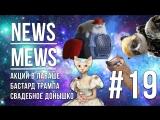 News Mews #19. Неждан в Путешествии