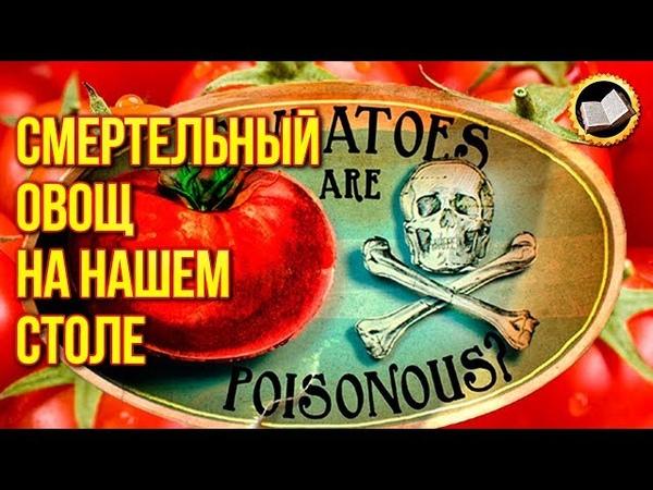 СМЕРТЕЛЬНЫЙ ОВОЩ НА НАШЕМ СТОЛЕ. Ядовитый томат. Вред помидора. ЗДОРОВЬЕ от ПРИРОДЫ