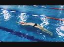 Школа плавания для взрослых