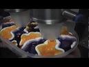PWS Semi Automatic Fancy Ice Cream Double Flower Tub Filling Machine
