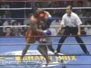 Peter Aerts vs Ernesto Hoost WGP K 1 1995 year