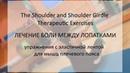 Упражнения Лечение боли между Лопатками Therapeutic Exercises