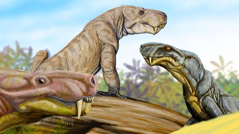 Горыныч и ночница из России. Звероподобные рептилии и повороты эволюции на пути к млекопитающим