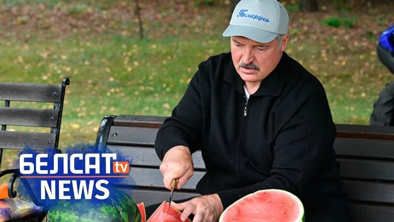Лукашэнка паказаў свае кавуны | лукашенко показал свои арбузы Белсат