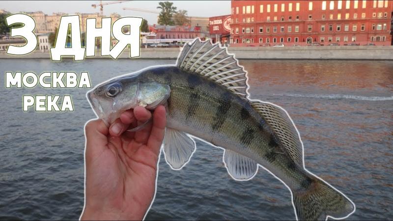 ЧТО можно ПОЙМАТЬ в Москве реке за 3 ДНЯ! Встретил К.Кузьмина