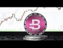 Криптовалюта Bytecoin BCN что это и что она представляет