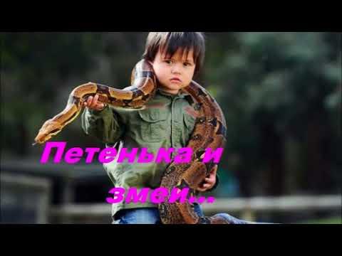 Петенька и змеи - Христианский Рассказ