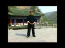Luohan 13 form video 2