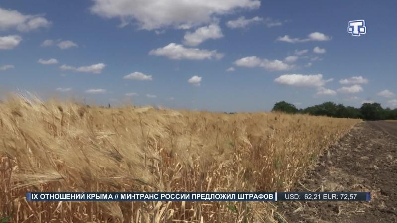 В Крыму ввели режим чрезвычайной ситуации