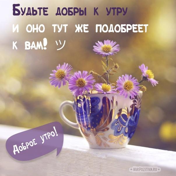 если в жизни ты, друг, не бездельник, образ жизни здоровый ведёшь,то запомни, — любой понедельникдля задела в работе хорош.с добрым утром тебя, с днём удачи!все мы творчеством благо творим.лишь бездельник и стонет, и плачет,ведь фортуна смеётся над