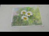 5 Как рисовать Ромашки и фон для цветов. Легко. How to paint background .Daisies Tatjana Baker