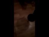 Ибрагим Алиев - Live