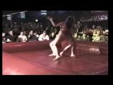 The Womens Oil Wrestling Federation Vol 004