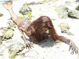 Мёртвая русалка на берегу моря.