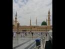 أجواء راااااائعة الآن من مسجد رسول الله ﷺ 💙💙💙