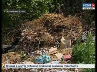 Куда попало - в Яльчикском районе жители нашли свой способ утилизации отходов
