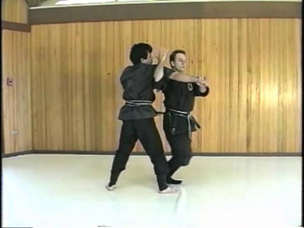 Combat Ninjutsu with Richard Van Donk and Ken Balanon