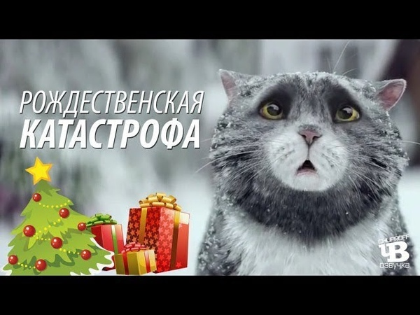 Урок Английского по Мультфильму Mogs christmas calamity