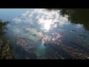 Vena Portae — Photographic Film (Matiquechua Remix)
