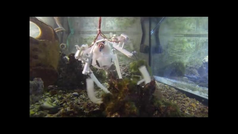 Робот осьминог